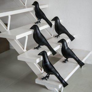 vogels10